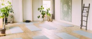 yin yoga friesland